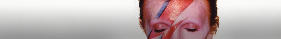 va_shop_header_banner_bowie